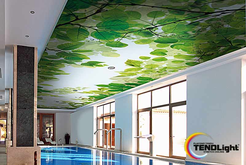 printed wall and ceiling
